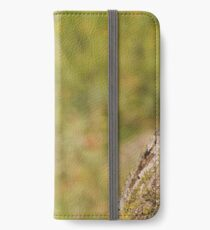 Juvie iPhone Wallet/Case/Skin