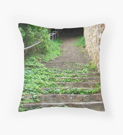 Steps to where Throw Pillow