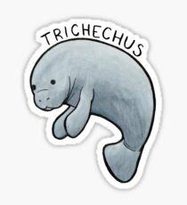 Manatee (Trichechus) Sticker