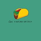 This is not a Taco by TPatthemalfoys