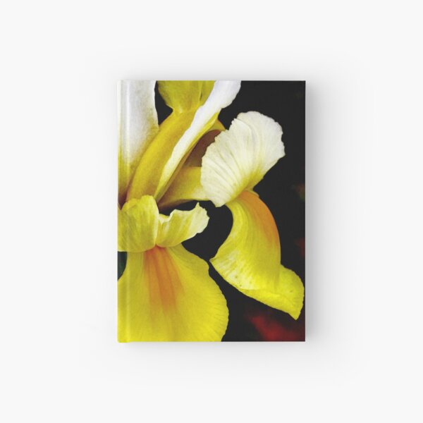 Colors Of The WInd Hardcover Journal