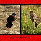 Joyful Song by Jan Landers