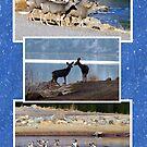 A Day at the Lake (Deer) by Jan Landers