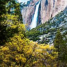 Spring foliage outlines Yosemite Falls by Doug Graybeal