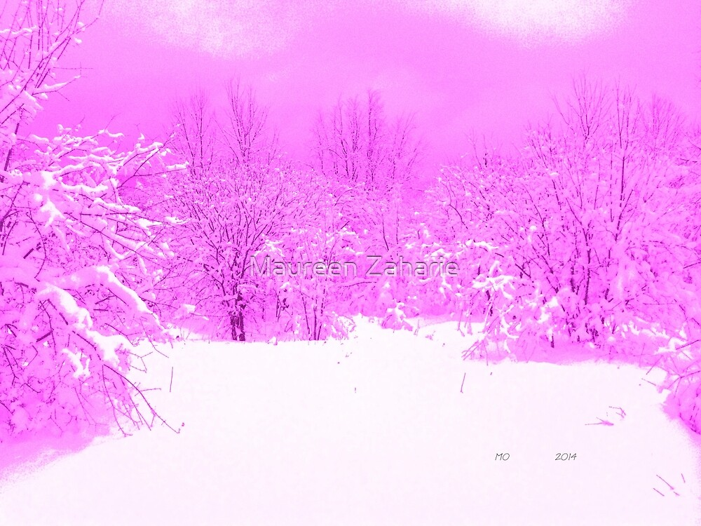 Pink Pop of Winter  by Maureen Zaharie