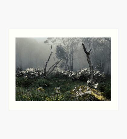 Fogscape Art Print