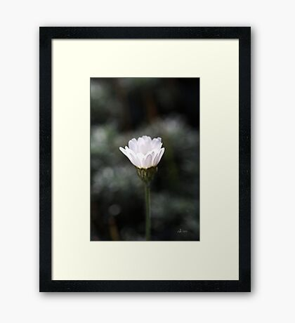 Nature's Glowing Framed Print