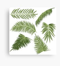 Green Palm Leaves Canvas Print