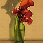 Calla Lilies in Bloom by MegsWhimsy