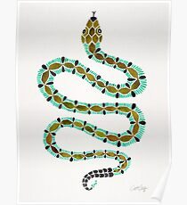 Turquoise Serpent Poster