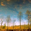Reflective Water by John Rivera