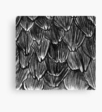 Pangolin Scales Canvas Print