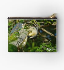Night Heron Nestled in the Branches Studio Pouch