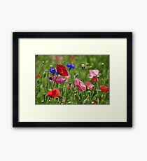 Poppies, As Is Framed Print