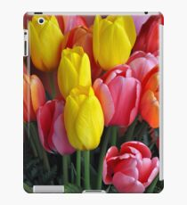 Pink and yellow tulips iPad Case/Skin