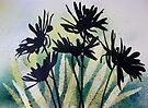 Daisies by Val Spayne