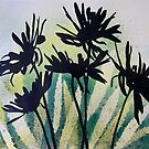 Daisies by Val Spayne