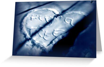 Message in a Snowbank by Jan Landers