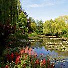 Claude Monet's jardin d'eau by Alex Cassels
