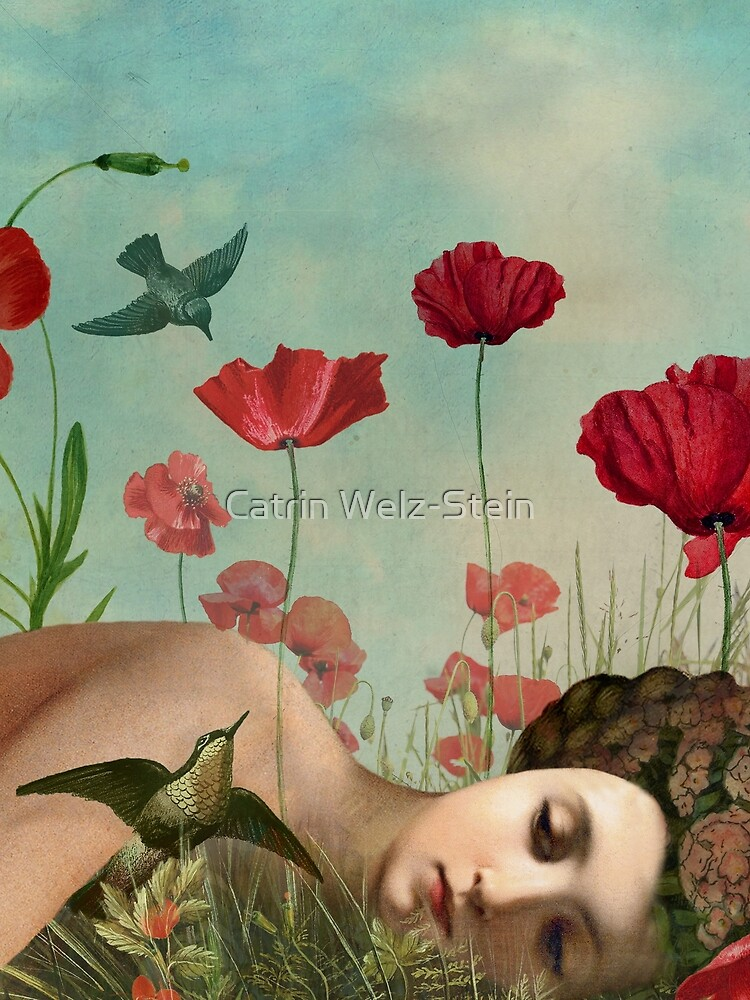In the Poppy Field by catrinarno
