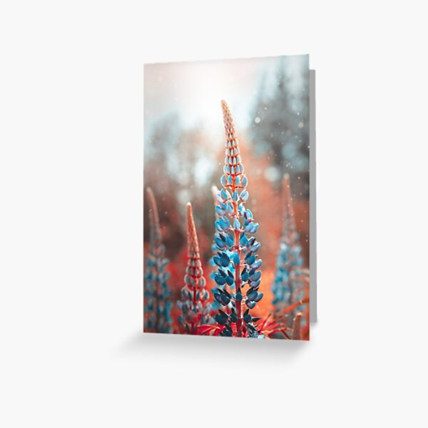 Blue lupines in magical tones. Red background with particles floating in the air Greeting Card