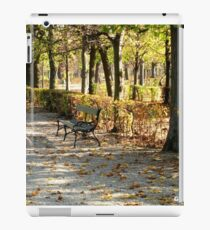 The Bench iPad Case/Skin