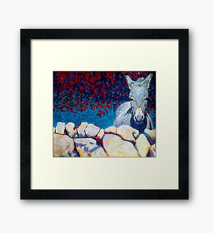 Wall, Donkey, Ireland Framed Print