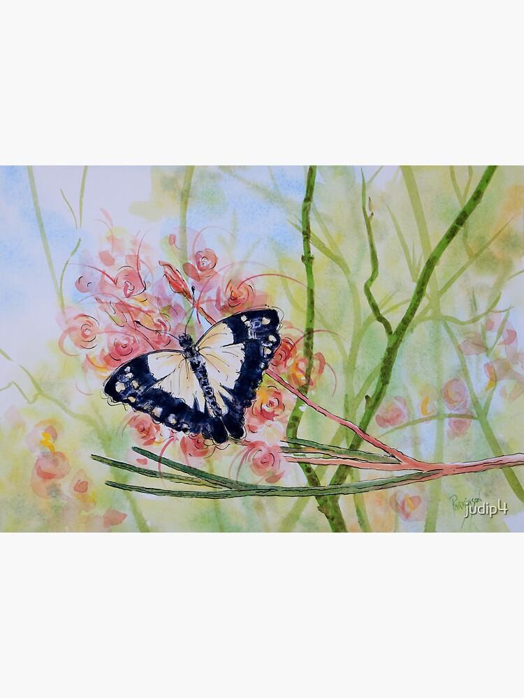 Butterfly Resting on a Grevillea Flower by judip4