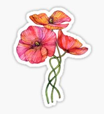 Peach & Pink Poppy Tangle Sticker