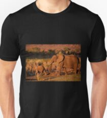 Elephant mother and calf, Kruger National Park Unisex T-Shirt