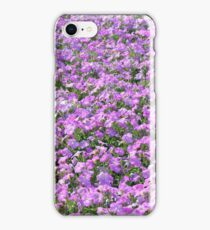 Rows of colorful flowers in the park. iPhone Case/Skin