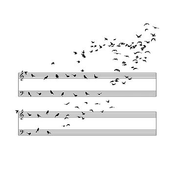 Natural Musical Notes by sokolselmani