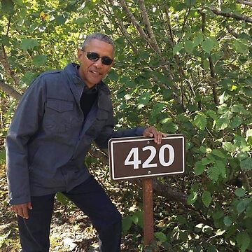 Obama 420 exit glacier by sassanhaise