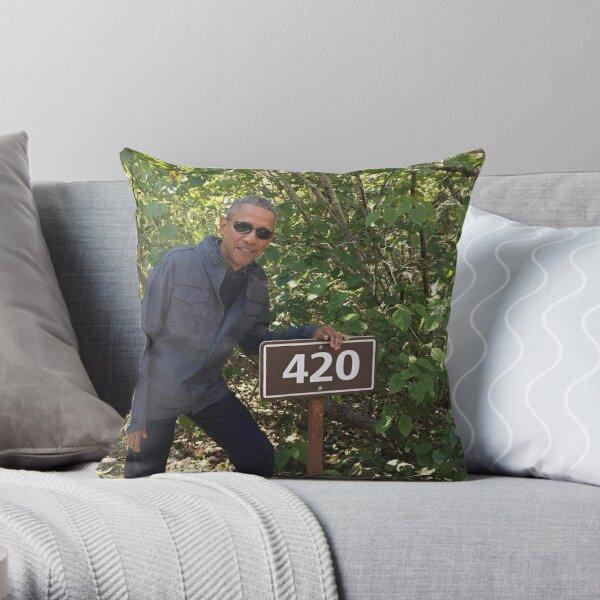 Obama 420 Ausfahrt Gletscher Dekokissen