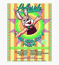 Lakeside Amusement Park Photographic Print