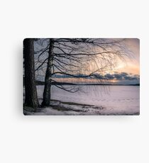 Spring evening at the lake Canvas Print