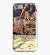 A Big rural Cat iPhone Case/Skin