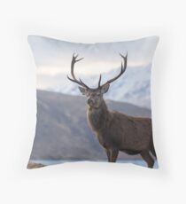 Red Deer Stag in Highland Scotland Throw Pillow