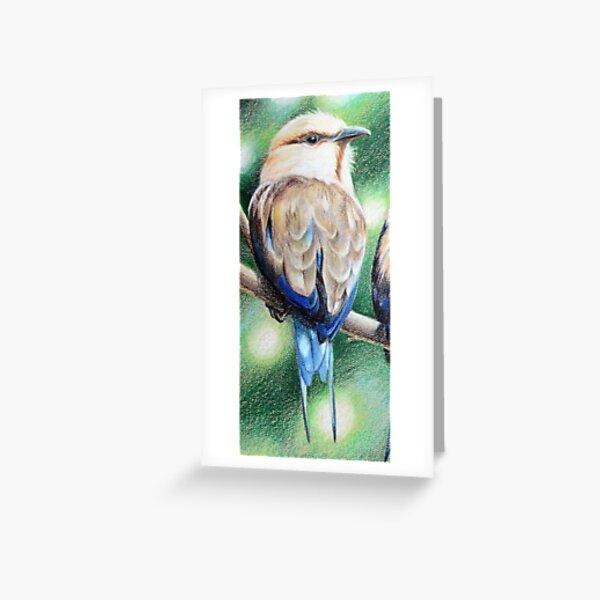 Oiseau tropical blue bellied roller Carte de vœux