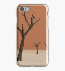Dead valley in Namibia iPhone Case/Skin