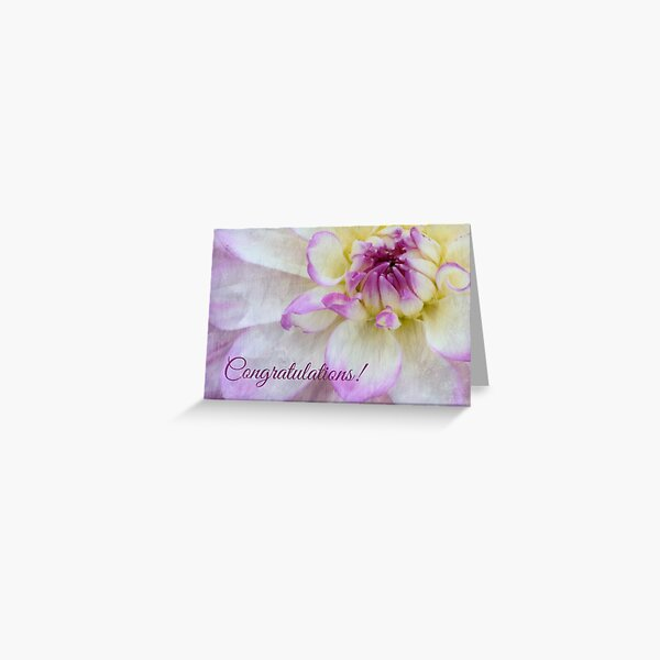 Textured Purple and White Dahlia Congratulations Greeting Card