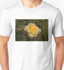 Golden Yellow Sparkles - a Fresh Rose With Dewdrops Unisex T-Shirt
