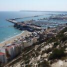 Alicante Beach View by Janone