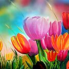 Tulipanes 2 by Angel Ortiz