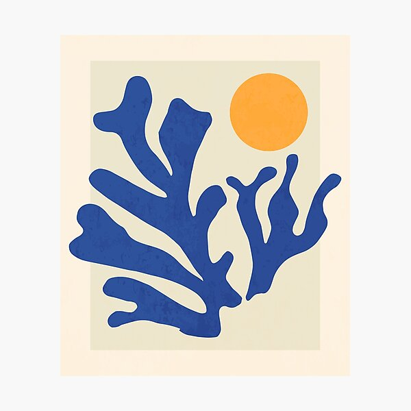 Sunshine Matisse Photographic Print