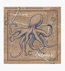 Burlap Shellfish Octopus Photographic Print