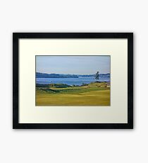 Chambers Bay Tree on the Puget Sound  Framed Print