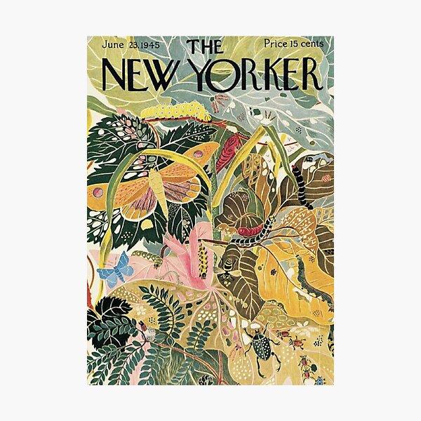 L'art vintage new-yorkais Impression photo
