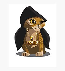 Cute Gangster Kitty Photographic Print