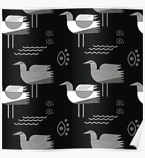 Seagulls and eyes black Poster